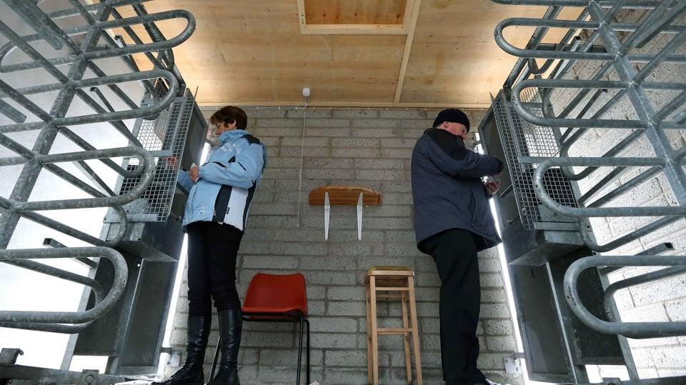 Volunteers operate the turnstiles at Wexford Park