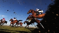 Cheltenham Festival: Odds and the pursuit of value