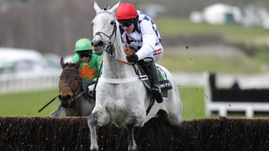 Simonsig has recovered from a bone splint