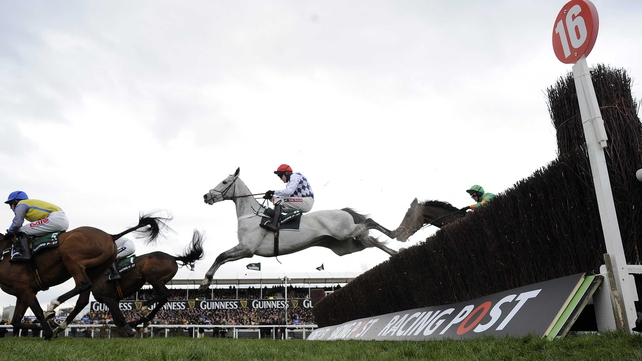 Simonsig has lost just one of his nine lifetime starts under rules