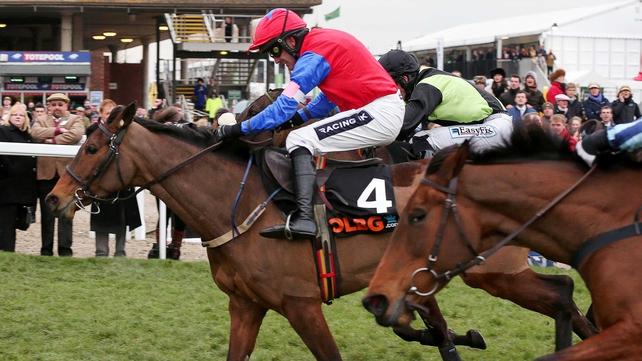 Quevega again proves unbeatable up the Cheltenham hill