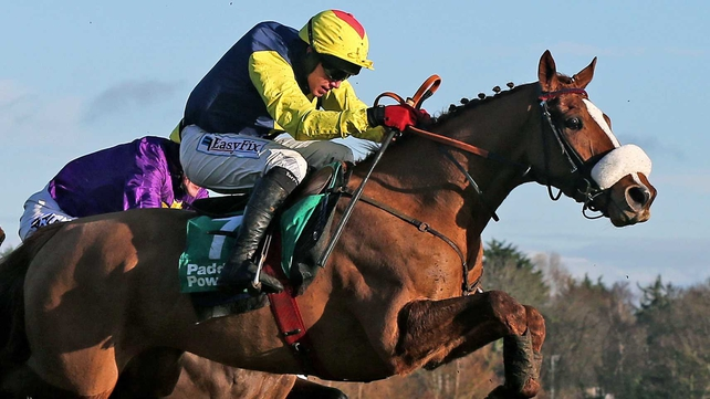 Flaxen Flare looks set to impress in Cork