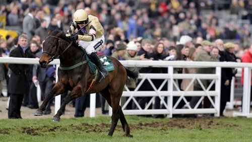 Le Vent D'Antan finished seventh behind Briar Hill (pictured) in the Champion Bumper at Cheltenham