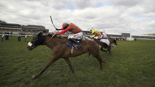 Benefficient suffered a serious leg injury in the Ryanair Chase at the Cheltenham Festival