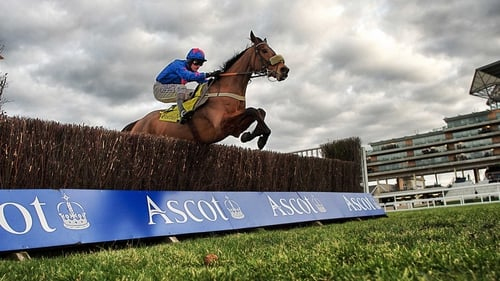 Cue Card had nine lengths to spare in the third race of the day