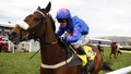 Cue Card to miss Cheltenham Gold Cup