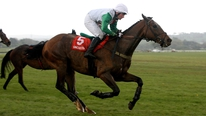 Trainer Peter Maher is hoping for another great Cheltenham and Aintree with Big Shu
