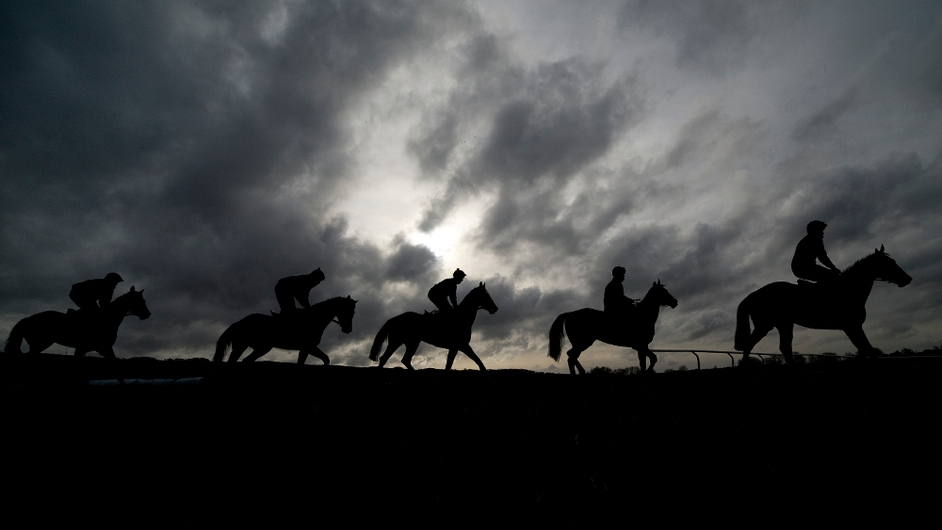 Irish trainer Willie Mullins' string of horses on the gallops at Cheltenham racecourse