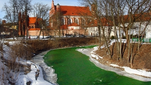 Lithuania dyes its River Vilnele green