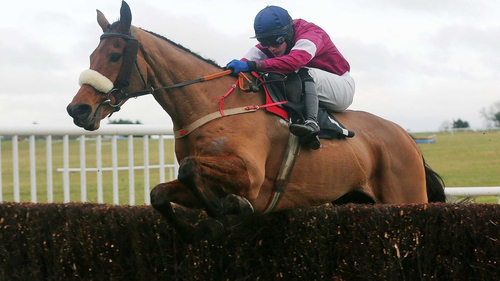 Quito De La Roque won the Kinloch Brae Chase at Thurles in January under Paul Townend