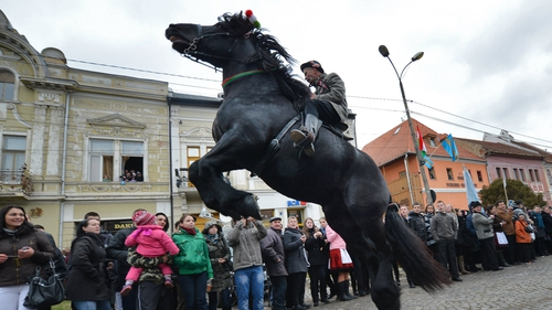 A man rides a horse during a parade on Hungary's National Day in Targu Secuiesc (250km north of Bucharest)
