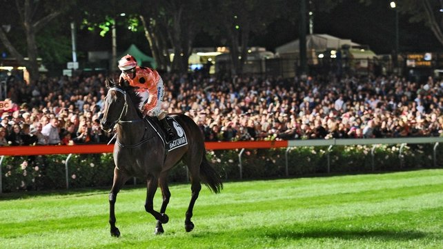 Black Caviar wins once again in Oz