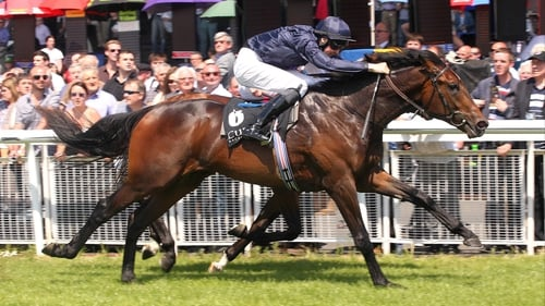 Lines Of Battle won his maiden at the Curragh