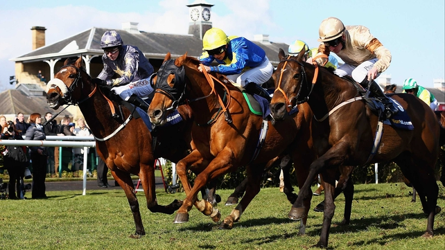 Levitate (yellow cap) charges late to beat Golden Village (right) and Brae Hill in the 2013 William Hill Lincoln