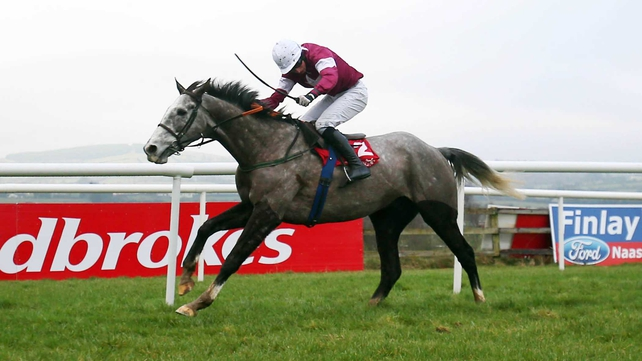 Panther Claw wins in Punchestown in January
