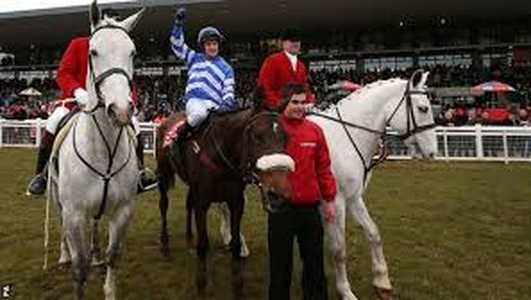 Winning the Irish Grand National