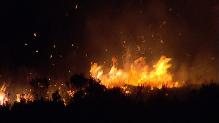 Gorse fires
