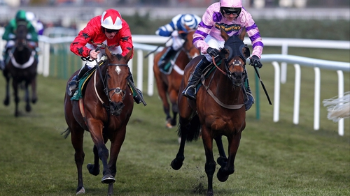 Zarkandar is a best-price 8-1 for next season's World Hurdle at the Cheltenham Festival, while The New One is likely to be aimed at the Champion Hurdle