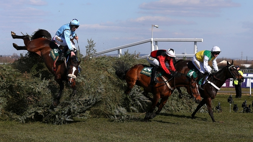 Trainer Nigel Twiston-Davies refused to blame the Aintree fences for the death of Little Josh