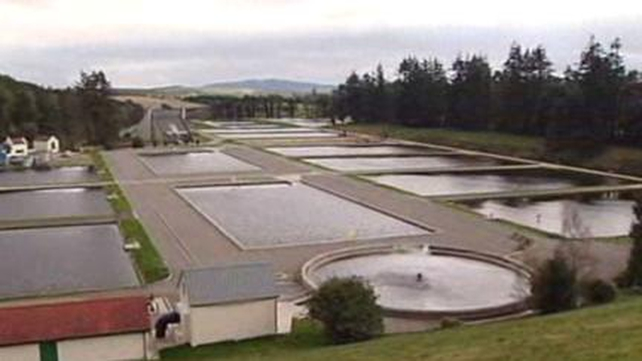 Restrictions will end when full production is restored at Roundwood Water Treatment Plant