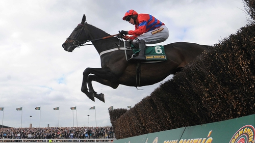 Sprinter Sacre could finish off his spectacular season in Punchestown's Champion Chase