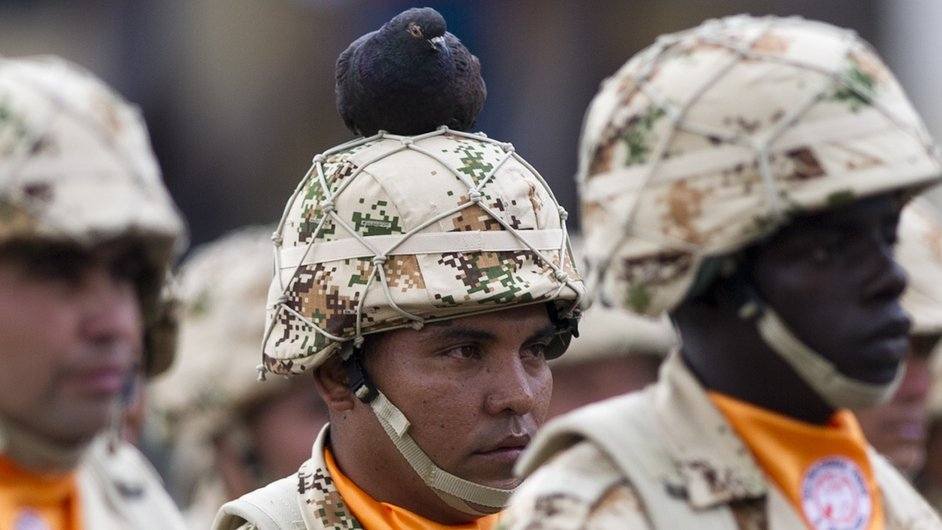 A bird rests on the head of a Colombian infantry soldier in a military ceremony at Bolivar Square in Bogota