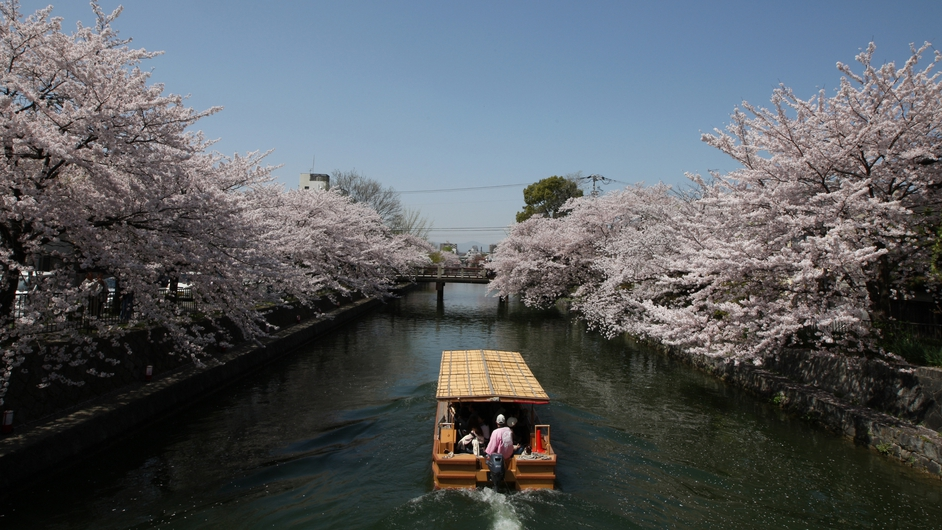 Tourists travel on a ferry near blooming cherry blossoms on the Okazaki canal in Kyoto, Japan