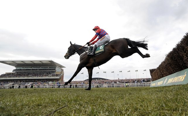 Sprinter Sacre, who has earned the soubriquet 'the big black aeroplane' from trainer Nicky Henderson, gunned down his rivals in emphatic fashion