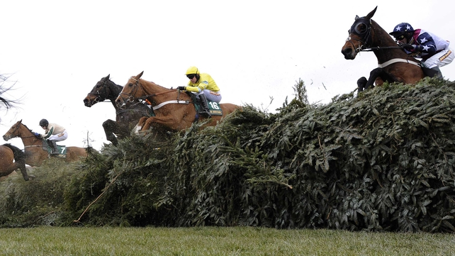 Triolo D'Alene claimed the Topham Chase at the Aintree Festival at 14-1