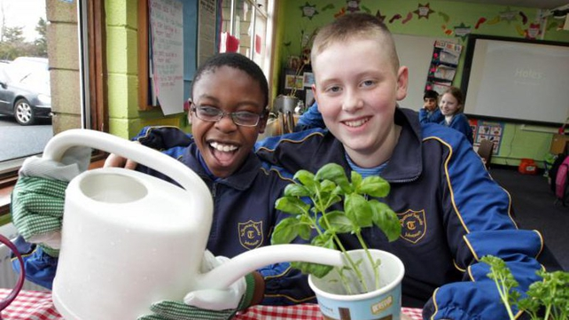 Teachers and youth leaders can apply for sow & grow packs