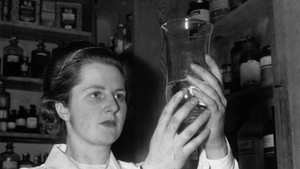 When not engaged in her political work in Dartford where she is standing as Tory candidate, Miss Margaret Roberts is busy with her work as a research chemist (1950)