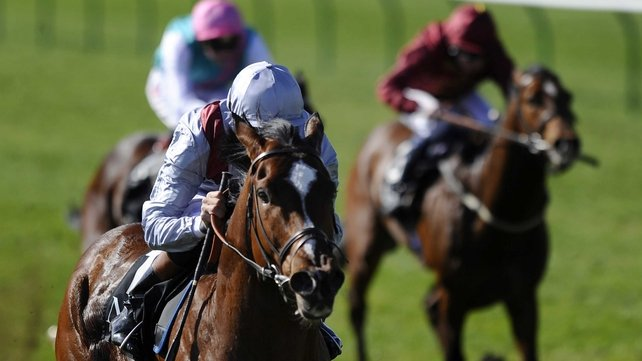 Toronado is a best-price 4-1 for the 2000 Guineas