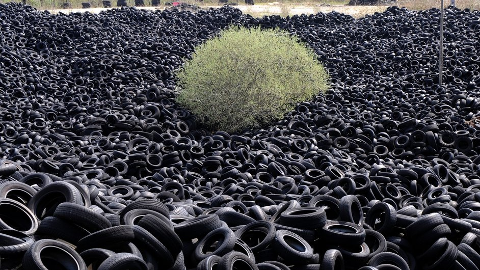 A tree is pictured among several thousands of tonnes of used tyres piled in an abandoned ten-hectare installation for recycling in Lachapelle-Auzac in France