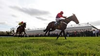 Watch a re-run of Sprinter Sacre's victory in the Punchestown Champion Chase.
