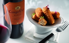 Discover the Campo Viejo Tapas Trail