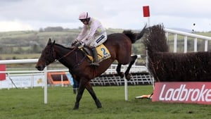 Arvika Ligeonniere should be suited by the course at Clonmel as he has shown a pronounced preference for right-hand tracks