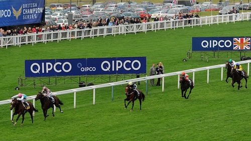 Cirrus Des Aigles chased home Frankel in last year's Champion Stakes