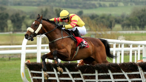 Davud Splaine partnered Beau Michael to victory at Punchestown