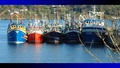 Common Fisheries Policy deal brokered