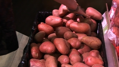 Donegal Investment Group sees a reduction in demand for certified seed potatoes across Europe