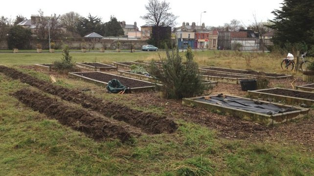 Another look at the allotment