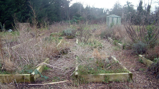 The Gerry Ryan Allotment before Countrywide took it over
