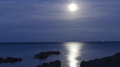 Lyric Through the Night