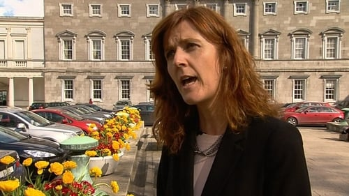Michelle Mulherin said she accepted suicide would not be removed as a reason for permitting an abortion