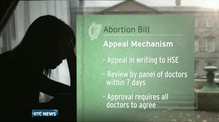 Heads of proposed abortion bill studied