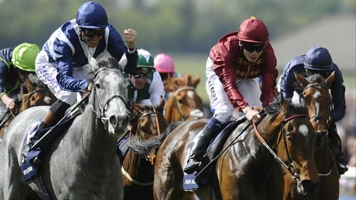 Just half a length separated Sky Lantern and Just The Judge at Newmarket in the 1000 Guineas