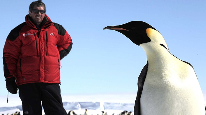 Charlie Bird in the Arctic