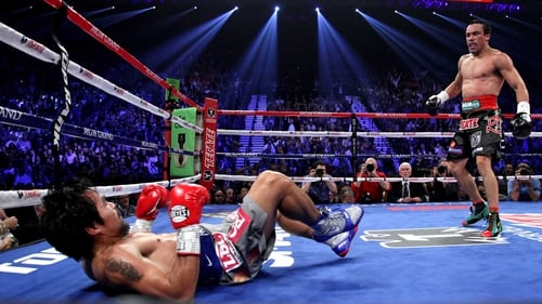 Manny Pacquiao (L) falls to the canvas after being knocked down by Juan Manuel Marquez