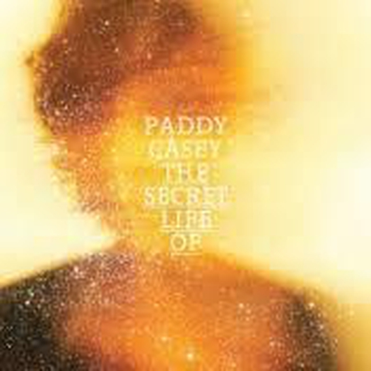 Live Music - Paddy Casey