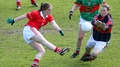 Cork are crowned Ladies' champions